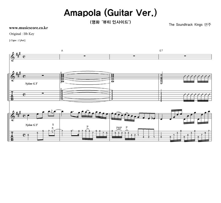 The Soundtrack Kiings - Amapola (Guitar Ver.)  A키  샘플